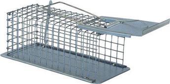 Cage Nasse piège 1 Souris