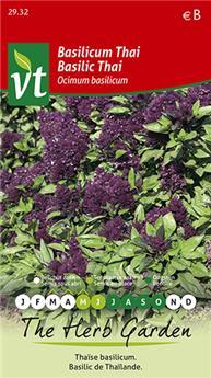 VT basilic thai