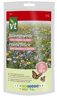 VT prairie fleurie pour papillons et abeilles