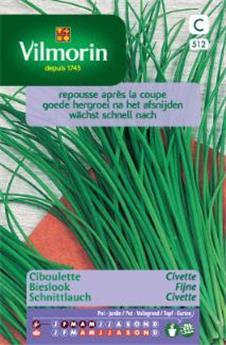 Ciboulette Civette - SC (Vilm)
